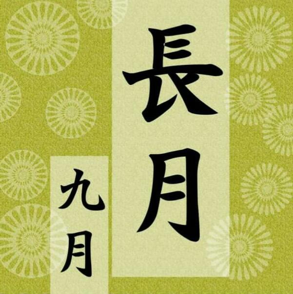 9月スタート♪|ミナミ心斎橋で働く貸店舗専門不動産社長のブログ