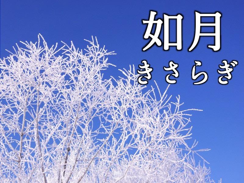 2月スタート♪|ミナミ心斎橋で働く貸店舗専門不動産社長のブログ