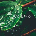 足るを知る|ミナミ心斎橋で働く貸店舗専門不動産社長のブログ